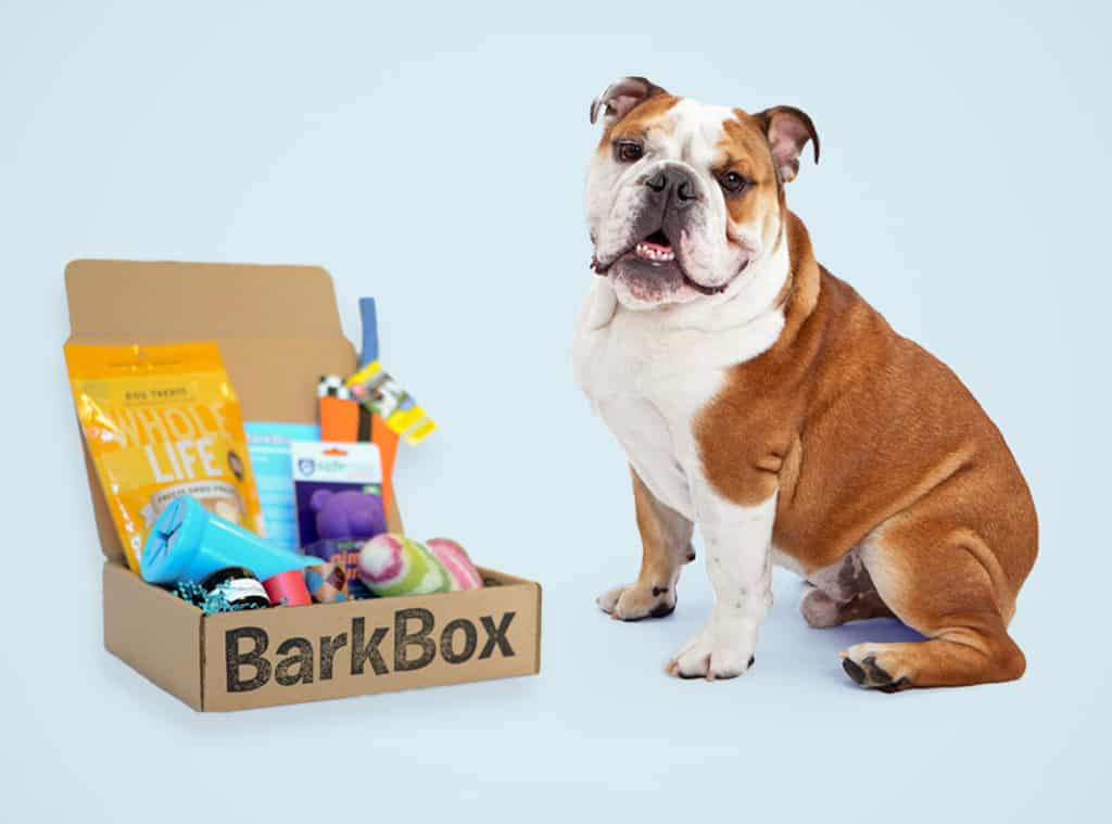 BarkBox: The Perfect Gift For Your Dog – Review and Limited Time ...